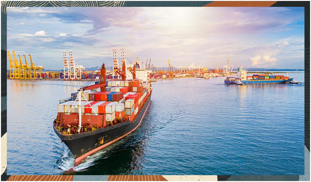 netsuite Transportation and Logistics